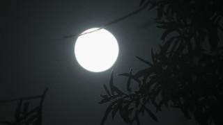 Η Ιαπωνία θέλει να στείλει αστροναύτη στη Σελήνη έως το 2030