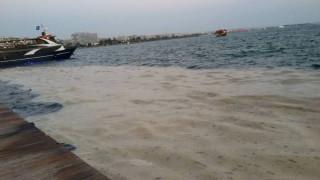Θεσσαλονίκη: Κανονικά κινούνται τα καραβάκια προς τις παραλίες παρά το πρόβλημα με το φυτοπλαγκτόν