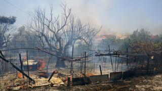 Μυτιλήνη: Τεράστια η καταστροφή από τη φωτιά στον Καρά Τεπέ