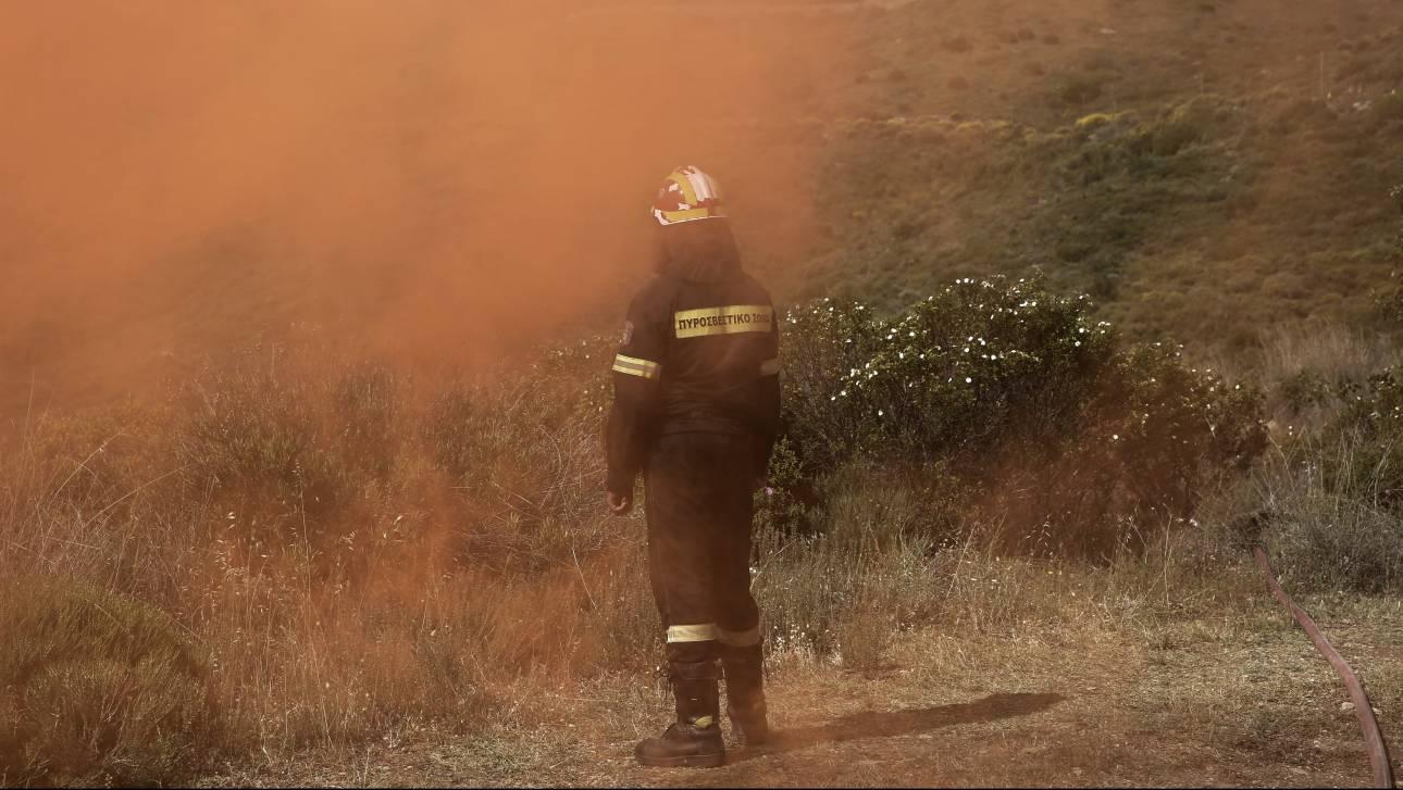 Νέα φωτιά στη Λακωνία - Απειλούνται κατοικίες στον οικισμό Παρασυρό