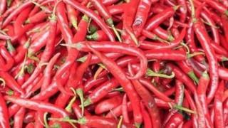 Γιατί δεσμεύτηκαν 1.668 κιλά πιπεριές στον Πειραιά