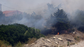 Πυρκαγιά στο Πανόραμα Μεγάρων