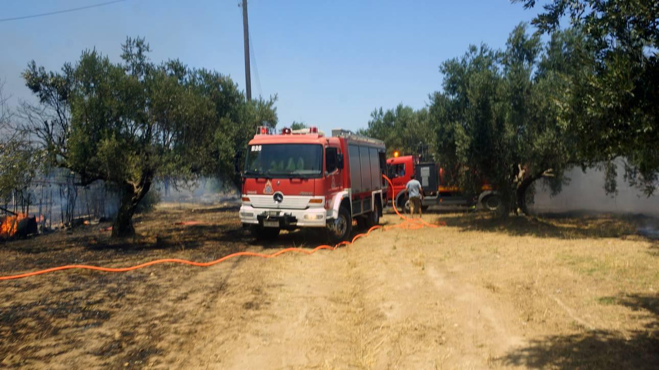 Πάτρα: Υπό μερικό έλεγχο η φωτιά στο Καστρίτσι