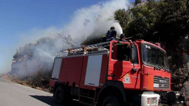 Σε εξέλιξη η φωτιά στη Λακωνία – Σχέδιο για την εκκένωση οικισμών