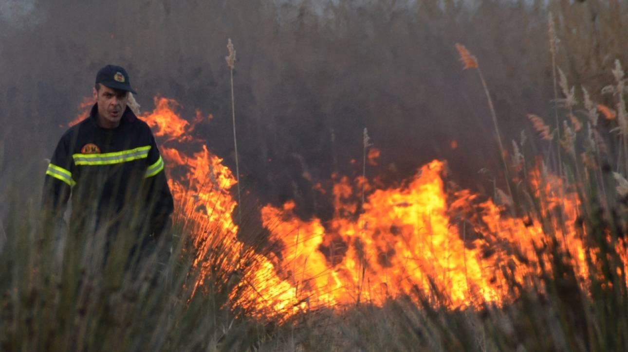 Πολύ υψηλός κίνδυνος πυρκαγιάς σήμερα σε Αττική, Στερεά Ελλάδα και Αιγαίο