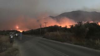 Συνεχίζουν τη μάχη με τις φλόγες οι πυροσβέστες στην ανατολική Μάνη