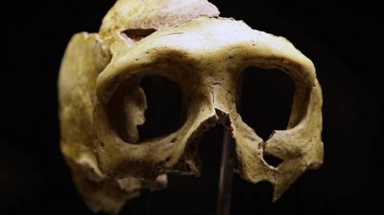Το ζευγάρωμα των προγόνων μας με Νεάντερταλ έγινε τουλάχιστον 220.000 χρόνια πριν