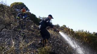 Πυρκαγιά ξέσπασε στη Λούτσα - Αγωνιούν οι κάτοικοι για τις περιουσίες τους
