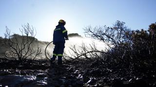 Σε ποιές περιοχές είναι υψηλός ο κίνδυνος εκδήλωσης πυρκαγιάς