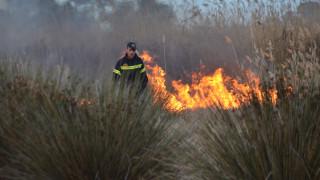 Πύρινα μέτωπα στην Κρήτη-Πάνω από 56 πυρκαγιές σε όλη τη χώρα σε ένα 24ωρο