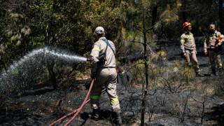 Πυρκαγιά στην Ζάκυνθο