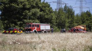 Ζάκυνθος: Περισσότερα από 1.000 στρέμματα έγιναν στάχτη στην πυρκαγιά