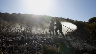 Ζάκυνθος: Σε ύφεση η πυρκαγιά στα Ορθωνιά - Μεγάλες οι καταστροφές (pics)