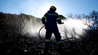 Μεγάλη πυρκαγιά στο Ζευγολατιό Κορινθίας