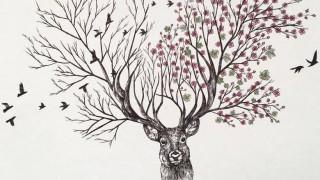 Ο καλλιτέχνης που κάνει τα δέντρα να ξεπετάγονται από ζώα (pics)