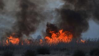 Πυροσβεστική: Σαράντα έξι πυρκαγιές το τελευταίο 24ωρο