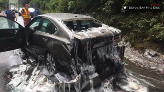 Αηδιαστικό θέαμα: Aυτοκίνητο γέμισε με χέλια