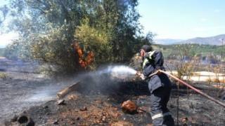 Πυρκαγιά σε δασική έκταση στην Πάτρα μετά από κεραυνούς