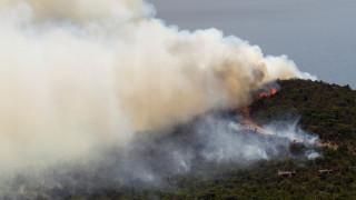Το Μαυροβούνιο ζητά διεθνή βοήθεια για να θέσει υπό έλεγχο τις πυρκαγιές (pics)