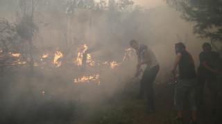 Μάχη με τις φλόγες στο Μαυροβούνιο – Καλύτερη η κατάσταση σε Κροατία - Πορτογαλία (pics)