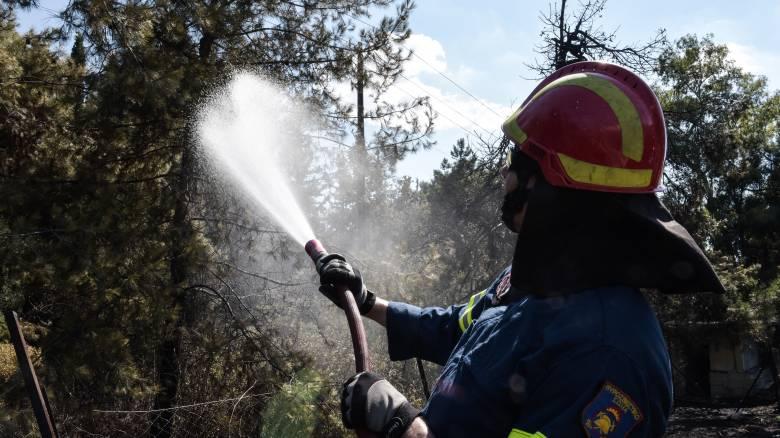 Θεσσαλονίκη: Μεγάλη κινητοποίηση της Πυροσβεστικής για φωτιά