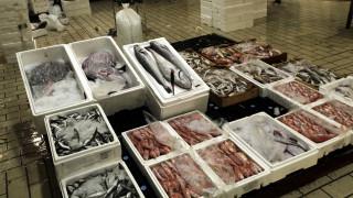 Έκθεση WWF: Η Μεσόγειος τρώει πολύ ψάρι...αλλά εισαγόμενο