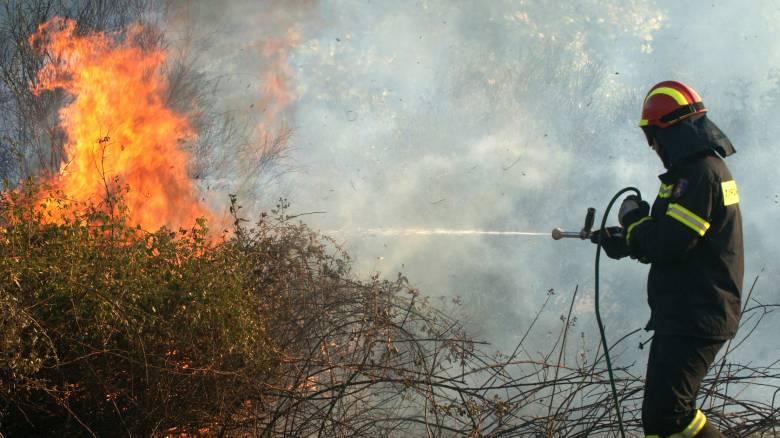 Φωτιά στο Ηράκλειο - Πύρινο μέτωπο στα όρια της Μονής Αγκαράθου