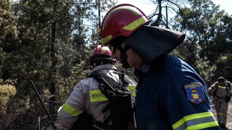 Μάχη για την κατάσβεση της φωτιάς που ξέσπασε στη Ζάκυνθο