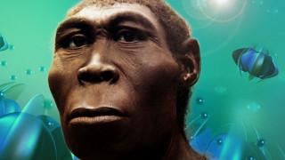 Ανθρώπινο είδος «φάντασμα» ανακάλυψαν στο σάλιο οι επιστήμονες