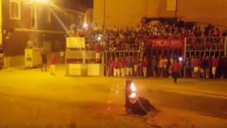 Ισπανία: Ο τραγικός θάνατος ενός ακόμη ταύρου (vid)