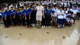 Ταϊλάνδη: Απελευθέρωση 1.066 χελώνων για τους εορτασμούς των γενεθλίων του Βασιλιά