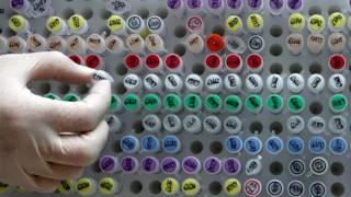 Η ιατρική του μέλλοντος είναι εδώ: Τροποποίηση ανθρώπινων εμβρύων για πρώτη φορά στις ΗΠΑ