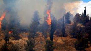Δεύτερη πυρκαγιά στο Πικέρμι σε ρεματιά πίσω από ξενοδοχείο