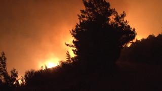 Υπό μερικό έλεγχο η πυρκαγιά στην Κάρυστο