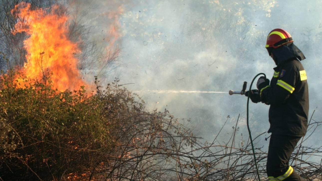 39 πυρκαγιές σε ένα 24ωρο - Υψηλός κίνδυνος πυρκαγιάς σήμερα