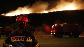 Φωτιά στα Καλύβια: Οι φλόγες έφτασαν στην παραλία της Σαρωνίδας (pics)