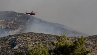 Φωτιά στα Καλύβια: Περιορίστηκε ο πύρινος εφιάλτης