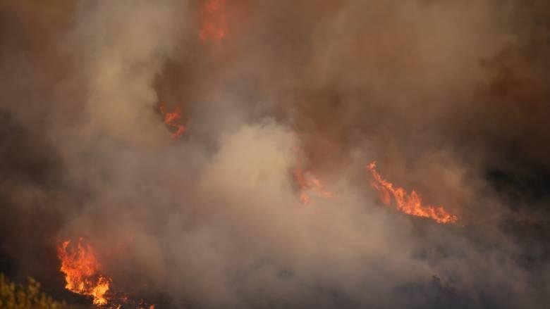 Μεγάλη φωτιά στις Σπέτσες (vid)