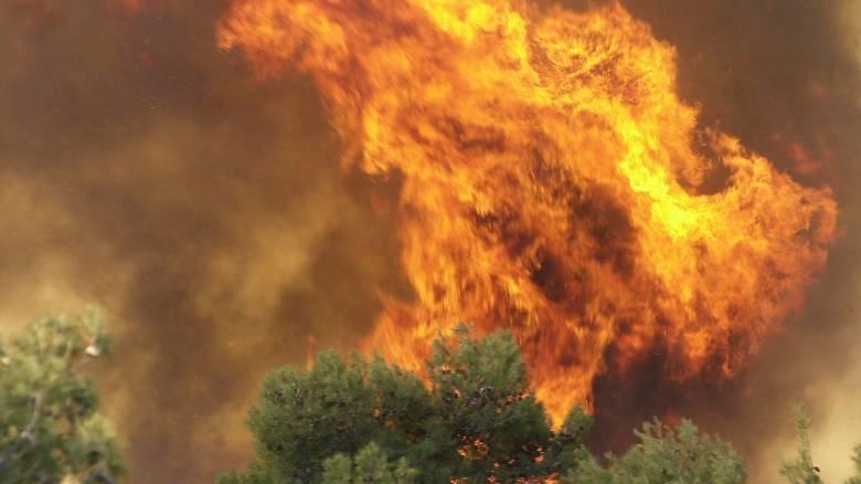 Φωτιές σε Σπέτσες, Μεσσηνία και Ανάβυσσο