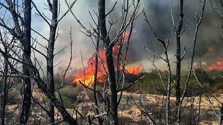 Ποιες περιοχές κινδυνεύουν την Τετάρτη από πυρκαγιές