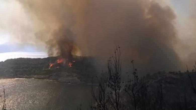 Αντιδήμαρχος Σπετσών για την φωτιά: Η κατάσταση είναι υπό έλεγχο (pics)