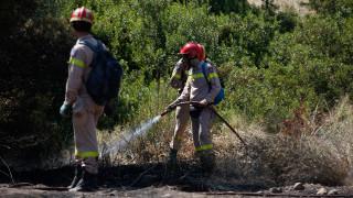 Μεγάλη πυρκαγιά στην Μυτιλήνη - Ζητούν ενισχύσεις από την Αθήνα (vid)