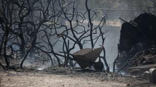 Μαίνεται η πύρινη κόλαση στη Μυτιλήνη