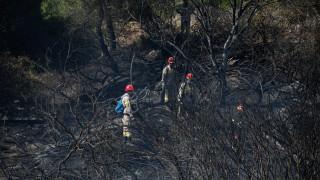Υπό έλεγχο η φωτιά στη Μυτιλήνη – Υψηλός κίνδυνος την Παρασκευή