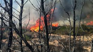 Πυρκαγιά στο Μενίδι, οριοθετήθηκε η φωτιά στα Μέγαρα