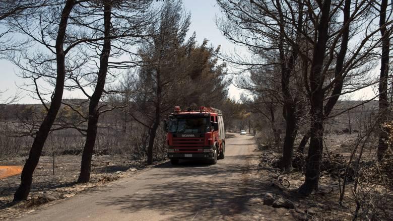 Σε ύφεση η φωτιά στα Κύθηρα, στάχτη 15.000 στρέμματα