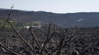 Η ΝΔ ζητά εξηγήσεις για τη φωτιά που κατέστρεψε τα Κύθηρα