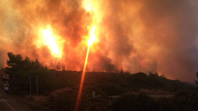 Φωτιά σε αγροτοδασική έκταση στη Μεσσηνία