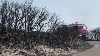 Χωρίς ενεργό μέτωπο η φωτιά στα Κύθηρα, κόντρα κυβέρνησης-ΝΔ για τις ευθύνες