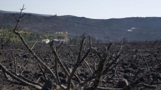 Κύθηρα: Υπό έλεγχο η πυρκαγιά μετά τη νέα αναζωπύρωση
